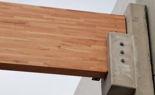 Construction : plus résistant que le pin, le hêtre sort du bois